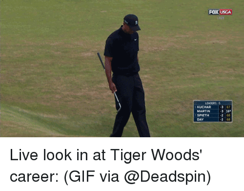 Gif, Sports, and Tiger Woods: Fox USCA  2 68 Live look in at Tiger Woods' career: (GIF via @Deadspin)