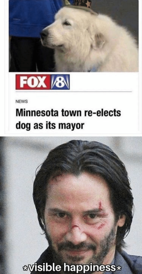 Minnesota: FOX8  NEWS  Minnesota town re-elects  dog as its mayor  visible happiness