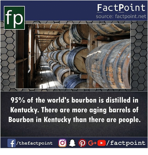 Memes, Kentucky, and Bourbon: fp  FactPoint  source: factpoint.net  95% of the world's bourbon is distilled in  Kentucky. There are more aging barrels of  Bourbon in Kentucky than there are people.