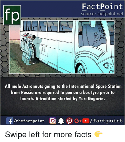 tyre: fp  FactPoint  source: factpoint.net  All male Astronauts going to the International Space Station  from Russia are required to pee on a bus tyre prior to  launch. A tradition started by Yuri Gagarin.  /the factpoint Swipe left for more facts 👉