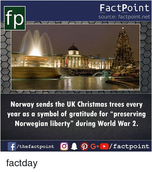 """Christmas, Memes, and Norway: fp  FactPoint  source: factpoint.net  Norway sends the UK Christmas trees every  year as a symbol of gratitude for """"preserving  Norwegian liberty"""" during World War 2.  /thefactpoint O factday"""