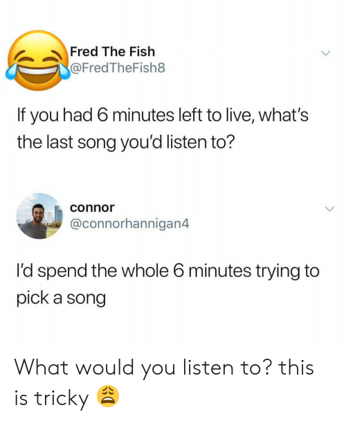 Memes, Fish, and Live: Fred The Fish  @FredTheFish8  If you had 6 minutes left to live, what's  the last song you'd listen to?  connor  @connorhannigan4  I'd spend the whole 6 minutes trying to  pick a song What would you listen to? this is tricky 😩