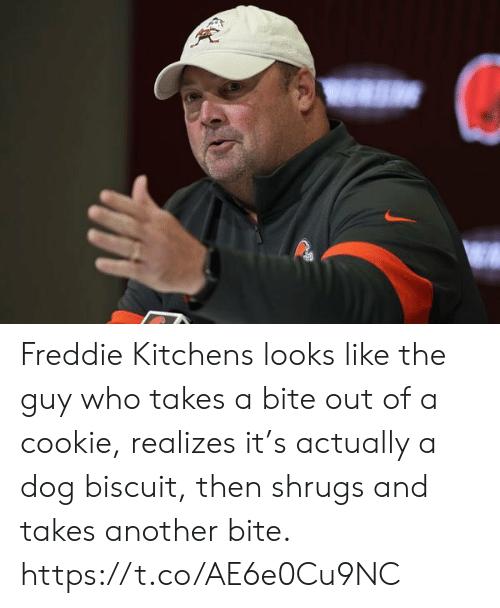 Sports, Another, and Dog: Freddie Kitchens looks like the guy who takes a bite out of a cookie, realizes it's actually a dog biscuit, then shrugs and takes another bite. https://t.co/AE6e0Cu9NC