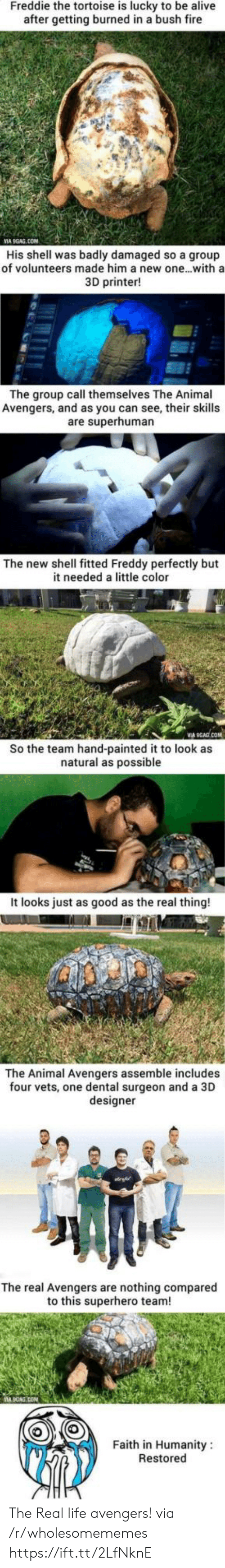 9gag, Alive, and Fire: Freddie the tortoise is lucky to be alive  after getting burned in a bush fire  VIA 9GAG.COM  His shell was badly damaged so a group  of volunteers made him a new one...with a  3D printer!  The group call themselves The Animal  Avengers, and as you can see, their skills  are superhuman  The new shell fitted Freddy perfectly but  it needed a little color  So the team hand-painted it to look as  natural as possible  It looks just as good as the real thing!  The Animal Avengers assemble includes  four vets, one dental surgeon and a 3D  designer  The real Avengers are nothing compared  to this superhero team!  Faith in Humanity  Restored The Real life avengers! via /r/wholesomememes https://ift.tt/2LfNknE