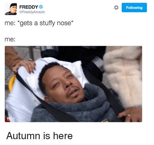 Stuffies: FREDDY  @Freddy Amazin  me: *gets a stuffy nose  me:  o Following Autumn is here
