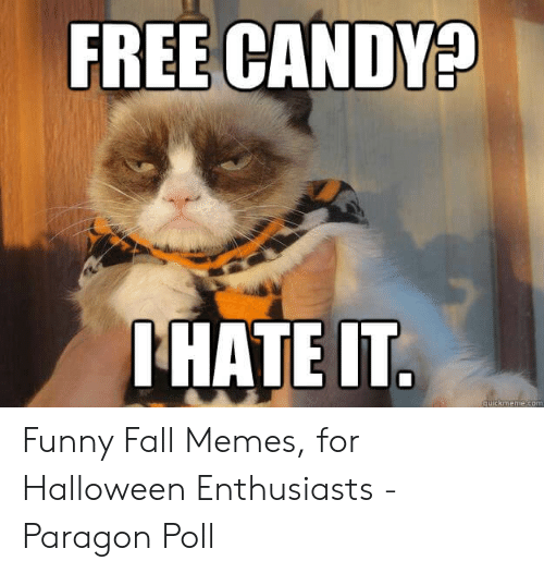 Fall Meme: FREE CANDYA  HATE IT Funny Fall Memes, for Halloween Enthusiasts - Paragon Poll