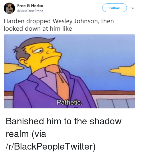 Blackpeopletwitter, Free, and The Shadow: Free G Herbo  @KickGamePropa  Follow  Harden dropped Wesley Johnson, thern  looked down at him like  Pathetic <p>Banished him to the shadow realm (via /r/BlackPeopleTwitter)</p>