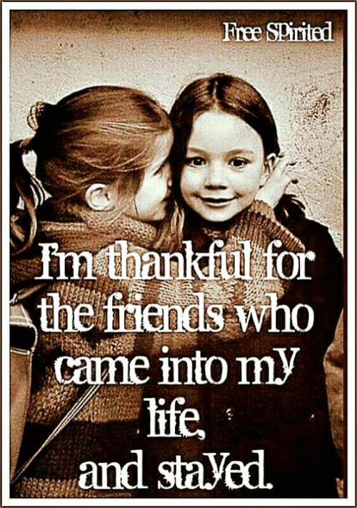 The Friends: Free SPirited  Inthankful for  the friends who  came into my  life,  and staVed.