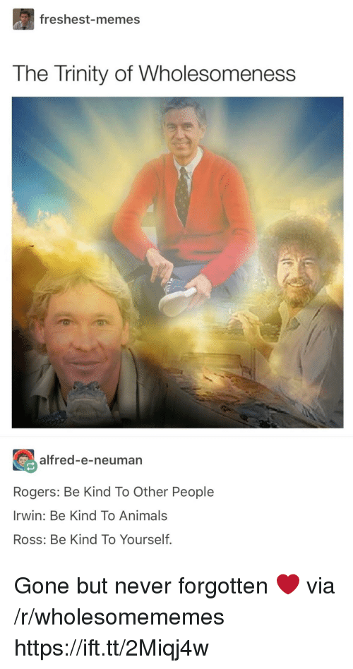 Animals, Memes, and Never: freshest-memes  The Trinity of Wholesomeness  alfred-e-neuman  Rogers: Be Kind To Other People  Irwin: Be Kind To Animals  Ross: Be Kind To Yourself. Gone but never forgotten ❤️ via /r/wholesomememes https://ift.tt/2Miqj4w