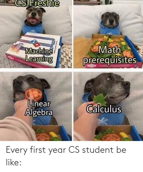Learning: Freshie  Math  prerequisites  Machine  Learning  Linear  Algebra  Calculus Every first year CS student be like: