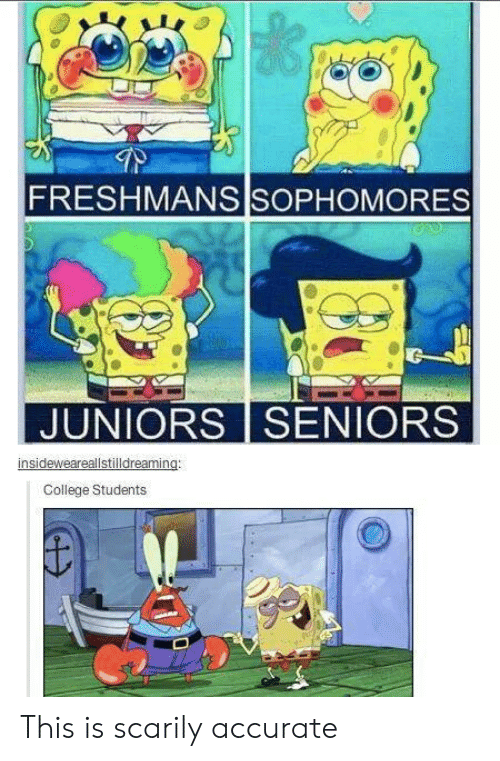 seniors: FRESHMANS SOPHOMORES  JUNIORS SENIORS  insideweareallstilldreaming:  College Students This is scarily accurate