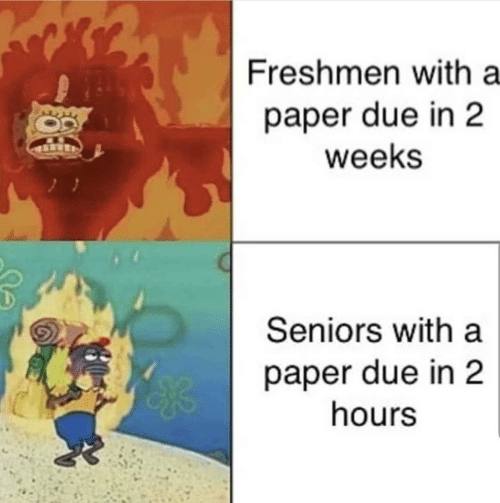 Paper, Seniors, and Freshmen: Freshmen with a  paper due in 2  weeks  Seniors with a  paper due in 2  hours