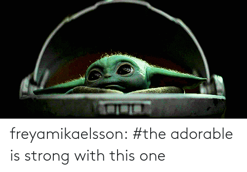 Adorable: freyamikaelsson: #the adorable is strong with this one
