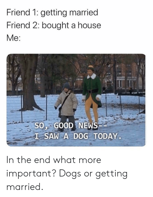 Dogs, News, and Saw: Friend 1: getting married  Friend 2: bought a house  Mе:  S0, GOOD NEWS  I SAW A DOG TODAY.  EX In the end what more important? Dogs or getting married.