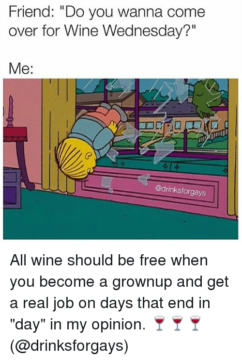 """Wine Wednesday: Friend: """"Do you wanna come  over for Wine Wednesday?""""  Me:  @drinksforgays All wine should be free when you become a grownup and get a real job on days that end in """"day"""" in my opinion. 🍷🍷🍷 (@drinksforgays)"""