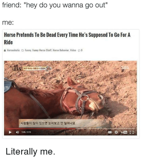 "Horses, Memes, and Horse: friend: ""hey do you wanna go out""  me  Horse Pretends To Be Dead Every Time He's Supposed To Go For A  Ride  & Horseaholic Co Funny. Funny Horse Stuff. Horse Behavior. Video D9  1 451315 Literally me."