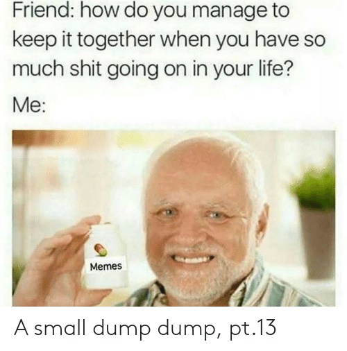 Life, Memes, and Shit: Friend: how do you manage to  keep it together when you have so  much shit going on in your life?  Me:  Memes A small dump dump, pt.13