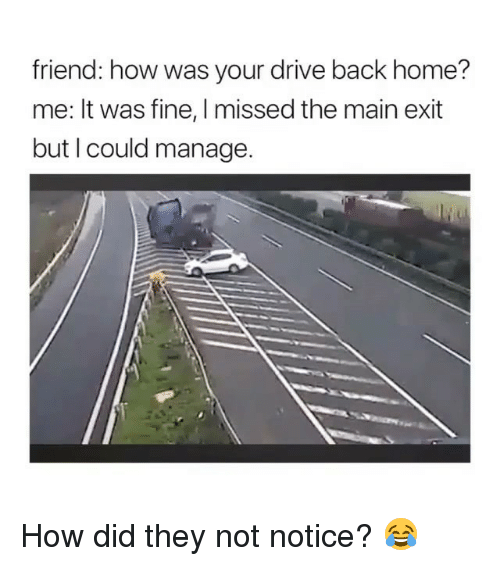 Memes, Drive, and Home: friend: how was your drive back home?  me: It was fine, I missed the main exit  but I could manage. How did they not notice? 😂