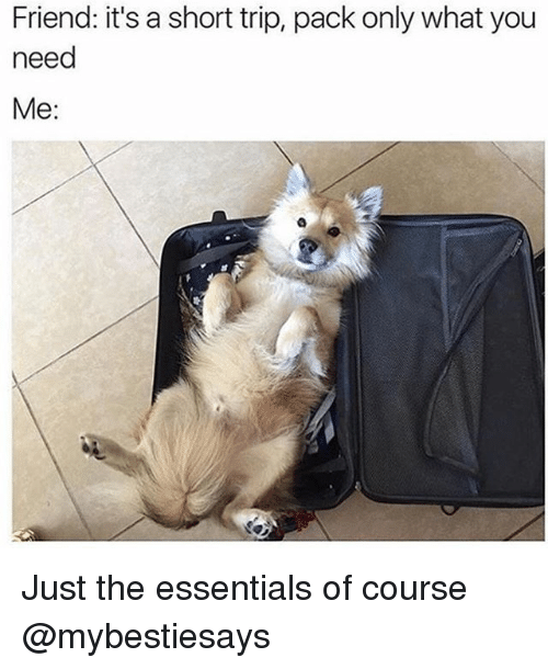 Girl Memes, Essentials, and Friend: Friend: it's a short trip, pack only what you  need  Me: Just the essentials of course @mybestiesays
