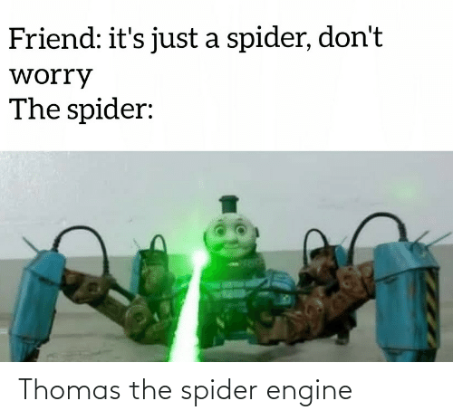 Dont Worry: Friend: it's just a spider, don't  worry  The spider: Thomas the spider engine