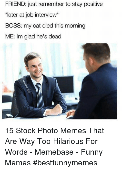"memebase: FRIEND: just remember to stay positive  ""later at job interview*  BOSS: my cat died this morning  ME: Im glad he's dead 15 Stock Photo Memes That Are Way Too Hilarious For Words - Memebase - Funny Memes #bestfunnymemes"