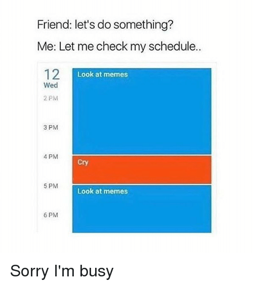 Let Me Check: Friend: let's do something?  Me: Let me check my schedule.  12  Look at memes  Wed  2 PM  3 PM  4 PM  Cry  5 PM  Look at memes  6 PM Sorry I'm busy