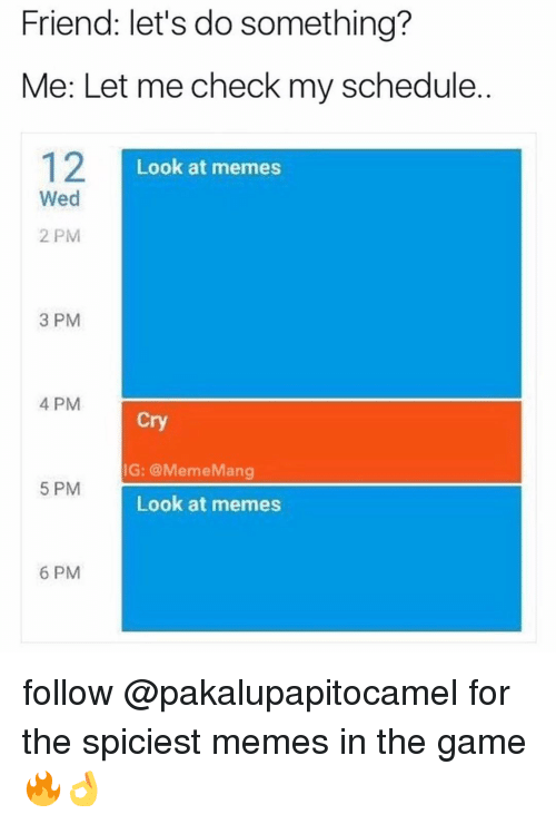 Let Me Check: Friend: let's do something?  Me: Let me check my schedule.  Look at memes  Wed  2 PM  3 PM  4 PM  Cry  IG: @MemeMang  5 PM  Look at memes  6 PM follow @pakalupapitocamel for the spiciest memes in the game 🔥👌
