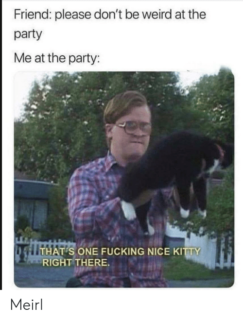 Fucking, Party, and Weird: Friend: please don't be weird at the  party  Me at the party:  THAT S ONE FUCKING NICE KITTY  RIGHT THERE. Meirl