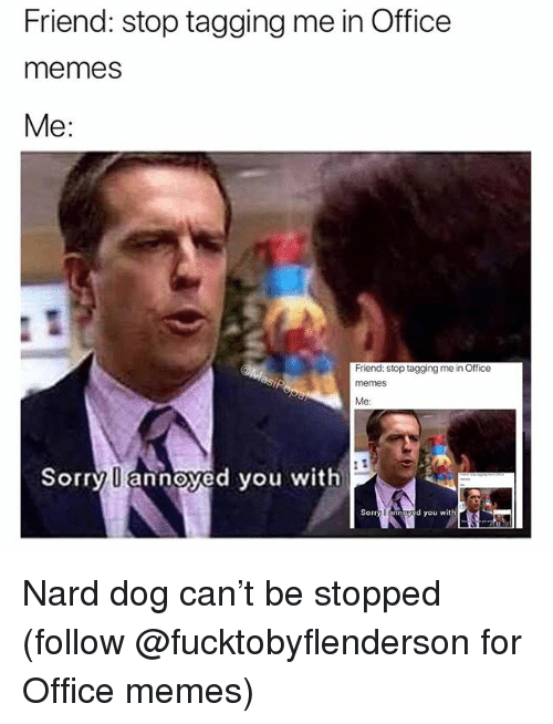 Office Memes: Friend: stop tagging me in Office  memes  Me:  Friend: stop tagging me in Office  memeS  Me:  Sorry U annoyed you with  Sorry U annoyed you with Nard dog can't be stopped (follow @fucktobyflenderson for Office memes)