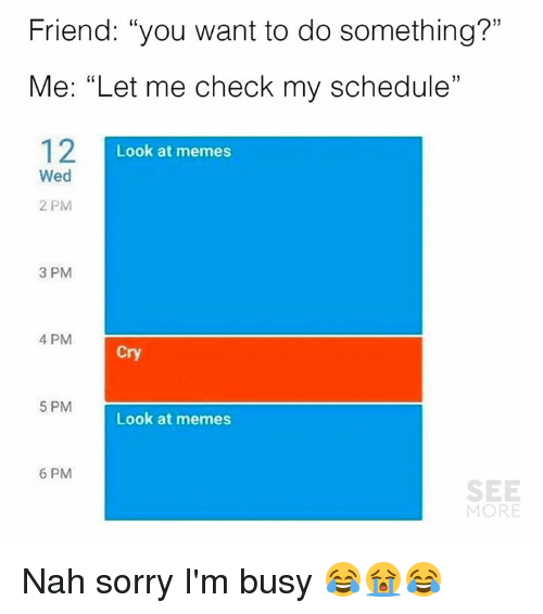 "ims: Friend: ""you want to do something?""  Me: ""Let me check my schedule""  12I  1)  Look at memes  Wed  2 PM  3 PM  4 PM  Cry  5 PM  Look at memes  6 PM  SEE  MORE Nah sorry I'm busy 😂😭😂"