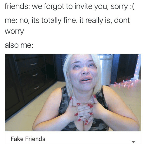 Fake, Friends, and Sorry: friends: we forgot to invite you, sorry :(  me: no, its totally fine. it really is, dont  Worry  also me:  Fake Friends