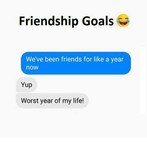 Friendship Goals: Friendship Goals  We've been friends for like a year  now  Yup  Worst year of my life!