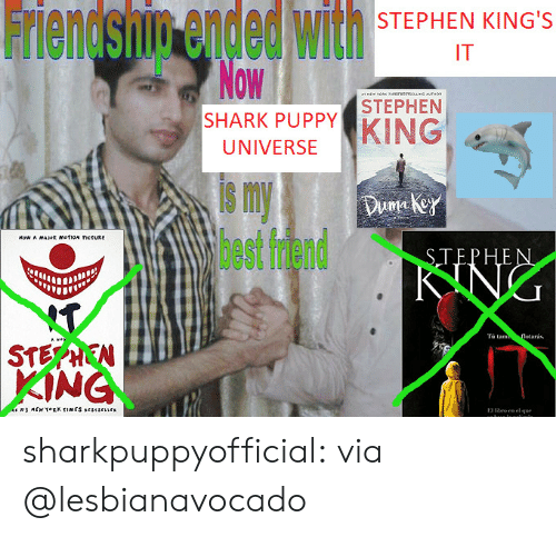 ork: Friendsnin ended with  Now  STEPHEN KING'S  IT  M  ORK esvesysUNG MTHO  STEPHEN  SHARK PUPPY  KING  UNIVERSE  s my  lhest fdend  Duma key  Now A MAJR mofioN ctURE  STEPHEN  KING  T  $TEPHEN  KING  Tà tam  flotarás.  Hite  MEW TORK TIMES srsescrs  ro en el que  E sharkpuppyofficial:  via @lesbianavocado