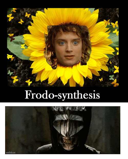 "synthesis: Frodo-synthesis <p><img src=""https://78.media.tumblr.com/3f9311f8f84109245ba835c8137cd711/tumblr_inline_ml77hwfkqO1qz4rgp.gif""/></p>"