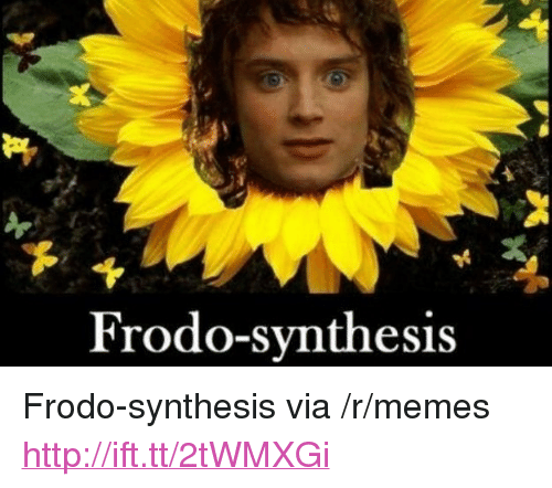 "synthesis: Frodo-synthesis <p>Frodo-synthesis via /r/memes <a href=""http://ift.tt/2tWMXGi"">http://ift.tt/2tWMXGi</a></p>"