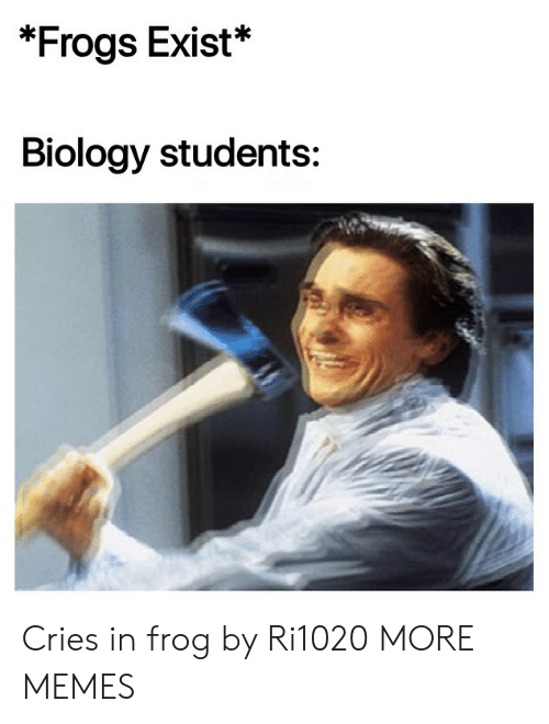 Dank, Memes, and Target: *Frogs Exist*  Biology students: Cries in frog by Ri1020 MORE MEMES