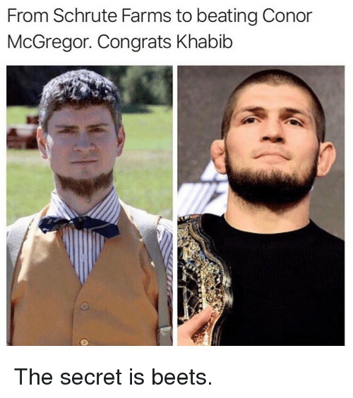 Conor McGregor, Memes, and 🤖: From Schrute Farms to beating Conor  McGregor. Congrats Khabib The secret is beets.