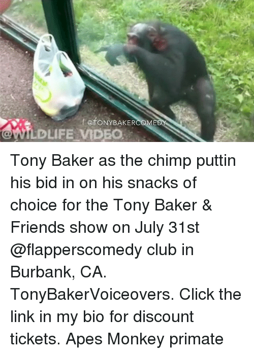 Bakerate: ftoNYBAKER  @fONYBAKER  WILDLIFE MDEO Tony Baker as the chimp puttin his bid in on his snacks of choice for the Tony Baker & Friends show on July 31st @flapperscomedy club in Burbank, CA. TonyBakerVoiceovers. Click the link in my bio for discount tickets. Apes Monkey primate