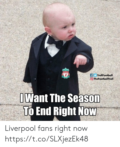 Liverpool Fans: fTrollFootball  向TheFootballTroll 、?  Want The Season  To End Right Now Liverpool fans right now https://t.co/SLXjezEk48