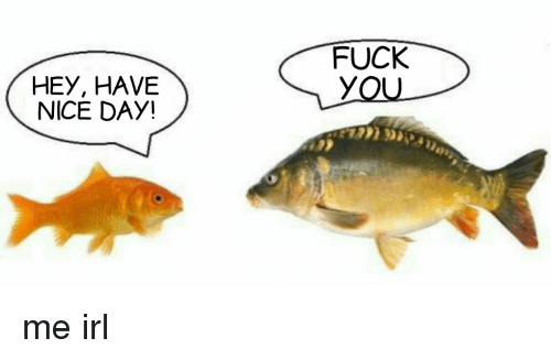 Fuck, Irl, and Me IRL: FUCK  HEy, HAVE  NICE DAY!