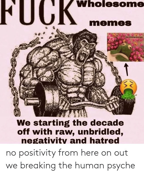 Negativity: FUCK  Wholesome  memes  We starting the decade  off with raw, unbridled,  negativity and hatred no positivity from here on out we breaking the human psyche
