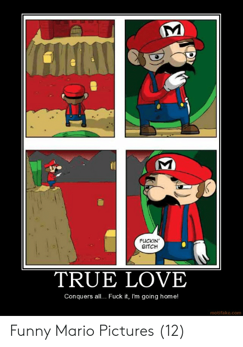 Funny Mario Memes: FUCKIN  BITCH  TRUE LOVE  Conquers all.. Fuck it, I'm going home!  motifake.com Funny Mario Pictures (12)