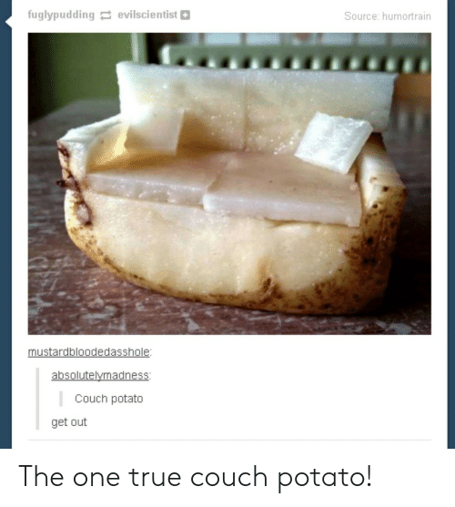 One True: fuglypudding evilscientist  Source: humortrain  mustardbloodedasshole:  absolutelymadness:  Couch potato  get out The one true couch potato!
