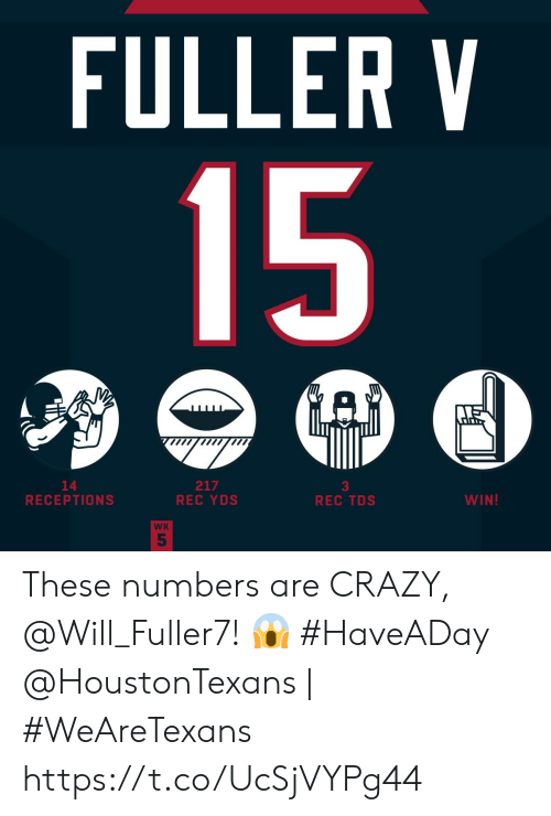 fuller: FULLER V  15  GAD  217  REC YDS  14  RECEPTIONS  WIN!  REC TDS  WK  5 These numbers are CRAZY, @Will_Fuller7! 😱 #HaveADay  @HoustonTexans | #WeAreTexans https://t.co/UcSjVYPg44