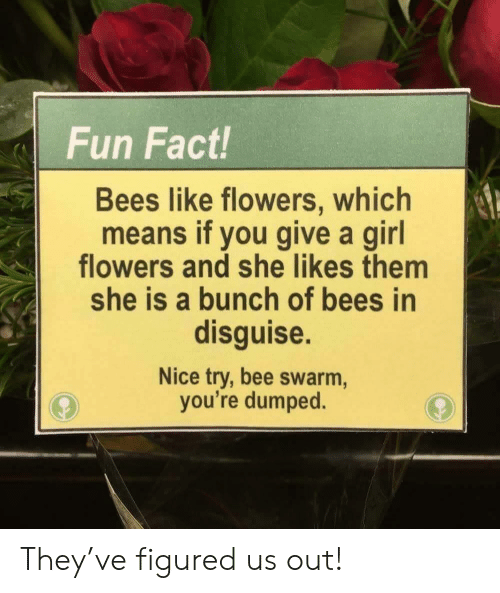 Flowers, Girl, and Nice: Fun Fact!  Bees like flowers, which  means if you give a girl  flowers and she likes them  she is a bunch of bees in  disguise.  Nice try, bee swarm,  you're dumped. They've figured us out!
