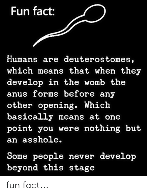 Memes, Never, and Asshole: Fun fact:  Humans are deuterostomes,  which means that when they  develop in the womb the  anus forms before any  other opening. Which  basically means at one  point you were nothing but  an asshole.  Some people never develop  beyond this stage fun fact...