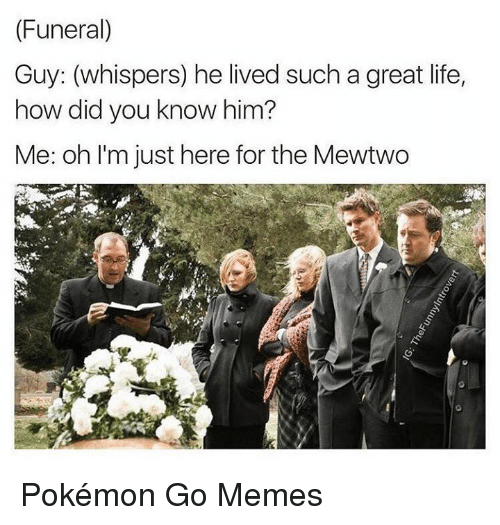 Dank, 🤖, and Did You Know: (Funeral)  Guy: (whispers) he lived such a great life,  how did you know him?  Me: oh I'm just here for the Mewtwo Pokémon Go Memes