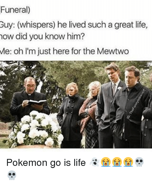 Memes, 🤖, and Did You Know: Funeral)  Guy: (whispers) he lived such a great life,  how did you know him?  Me: oh I'm just here for the Mewtwo Pokemon go is life 👻😭😭😭💀💀