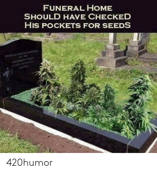 seeds: FUNERAL HOME  SHOULD HAVE CHECKED  HIS POCKETS FOR SEEDS 420humor