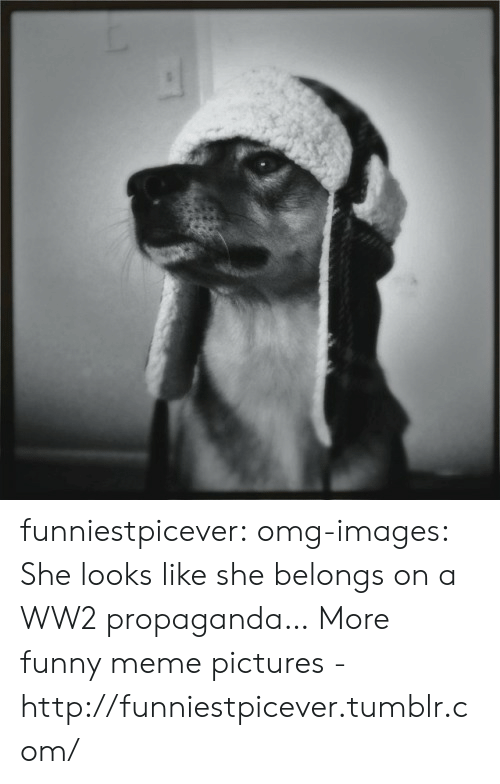 Funny, Meme, and Omg: funniestpicever:  omg-images:  She looks like she belongs on a WW2 propaganda… More funny meme pictures - http://funniestpicever.tumblr.com/